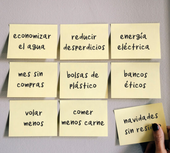 Propósitos sostenibles BOLSETA para el 2021